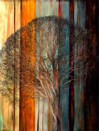 trees_5_20120909_1327500218